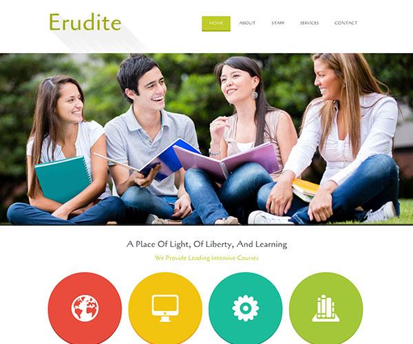 Mẫu thiết kế web giáo dục - Erudite
