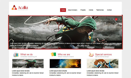 Miễn phí tải về 150 mẫu website responsive tuyệt đẹp (P 6)