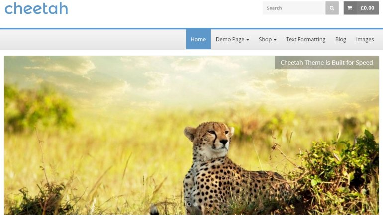 14 cheetah thiet ke website ban hang mien phi