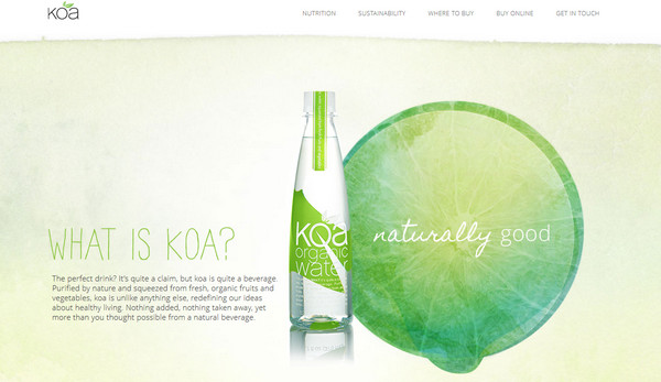 koa water thiet ke web single page
