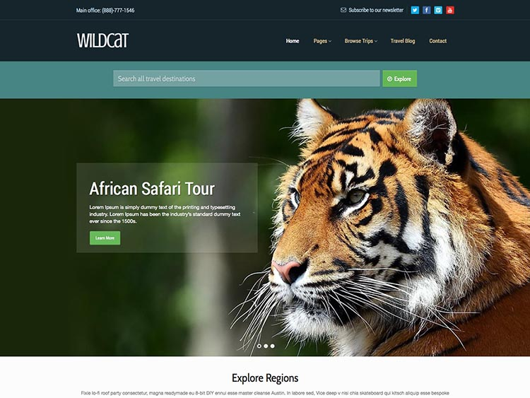 Wildcat thiet ke website du lich dep