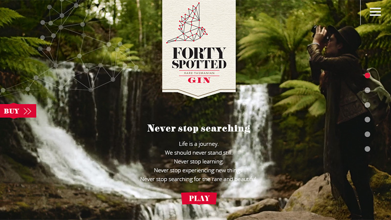 Forty Spotted Gin thiet ke website dep