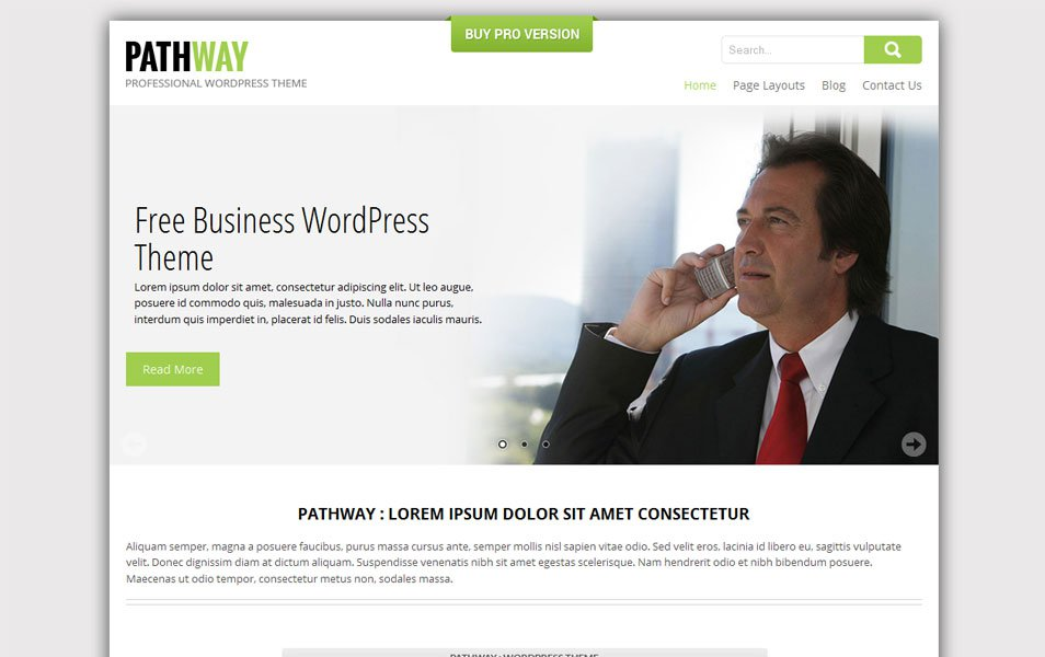 skt pathway free portfolio wordpress theme thiet ke web