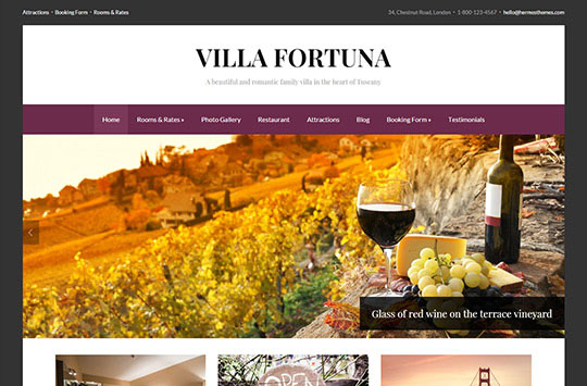 fortuna-wordpress-theme