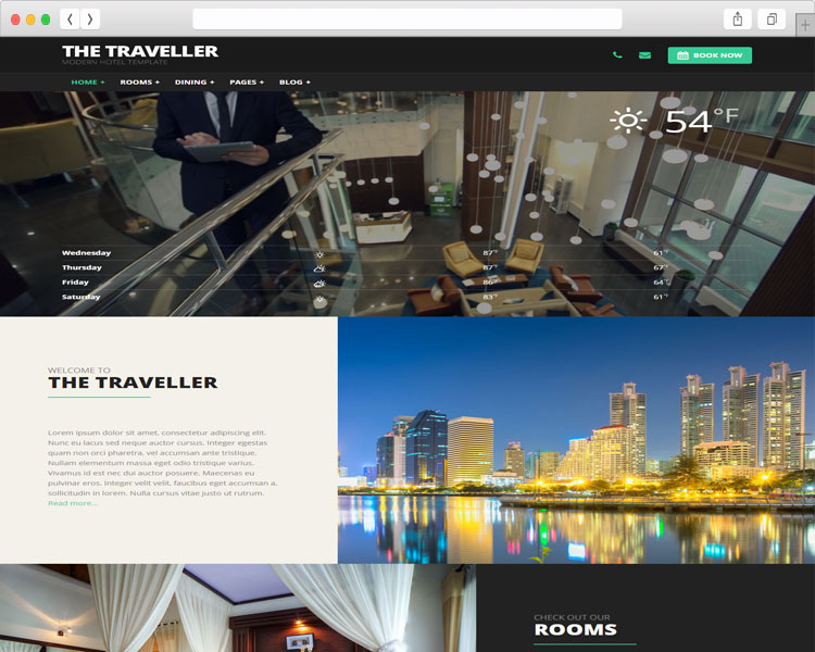 tim hieu mau thiet ke website du lich travel insurance va the traveller 2